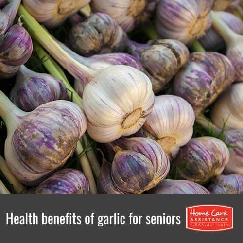 Why Seniors WIll Benefit from Eating Garlic in Oshkosh, WI
