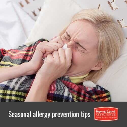 Helping Seniors Stave Off Seasonal Allergies