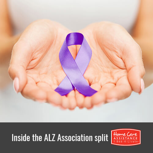 What Did the Alzheimer's Association Split into Local Factions in Oshkosh, WI?